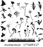 Silhouettes Of Various Flowers...