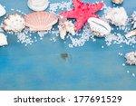 border os sea star and shells... | Shutterstock . vector #177691529