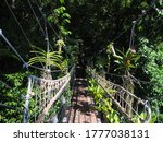 Jungle Swing Bridge  Wooden...