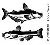 set of illustration of catfish... | Shutterstock .eps vector #1777076177