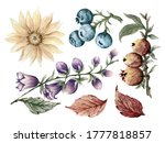 Watercolour Gouache Botanical...