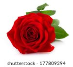 Stock photo red rose isolated on white background 177809294