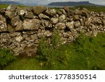 Stone Wall On The Isle Of Muck...