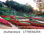The View Of Colorful Garden...