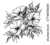 tattoo branch of flowers.... | Shutterstock . vector #1778858684
