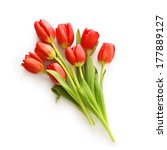 bunch of tulips isolated on... | Shutterstock . vector #177889127