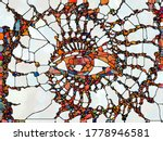 Art Study Of Stained Glass...