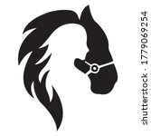 Silhouette Of A Horse And A...