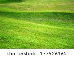 green grass for background    Shutterstock . vector #177926165