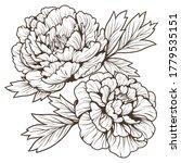 doodle art of beautiful flower...   Shutterstock .eps vector #1779535151