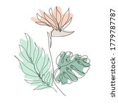 decorative hand drawn strelitza ...   Shutterstock .eps vector #1779787787