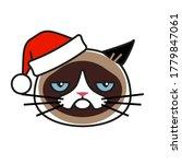 Grumpy Cat In Christmas Hat...