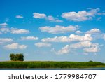 Landscape With Cumulus Clouds ...