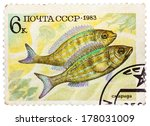 Small photo of RUSSIA - CIRCA 1983: post stamp printed in USSR (CCCP, soviet union) shows Perciformes (Percomorphi, Acanthopteri) from food fish series, Scott catalog 5165 A2470 6k blue yellow brown, circa 1983