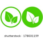 set with green leaf icons in... | Shutterstock .eps vector #178031159