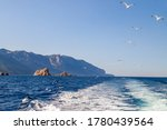 Sea And Rocks. Flock Of...
