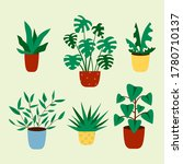 cactus and succulent plant... | Shutterstock .eps vector #1780710137