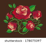 composition of five roses with... | Shutterstock .eps vector #178075397