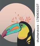 Colorful Toucan Bird Beautiful...
