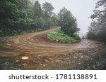 Landscape Of Serpentine Dirt...
