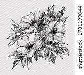 tattoo branch of flowers.... | Shutterstock . vector #1781199044