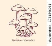 Forest Poisonous Mushroom...