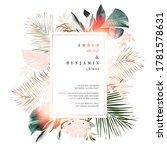 tropical elegant pastel frame... | Shutterstock .eps vector #1781578631
