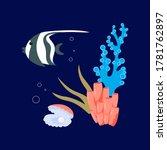Beautiful Shell Pearl  Coral...