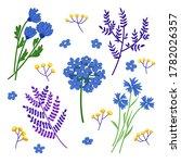 set of blue wild flower and... | Shutterstock .eps vector #1782026357