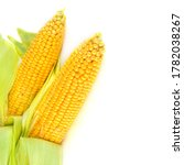Corn Cobs Isolated On White...