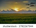 Sunset   Nature Of The Danish...