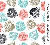 imprints herbs  flowers and... | Shutterstock .eps vector #1782692927