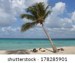 caribbean beach with palm trees ... | Shutterstock . vector #178285901