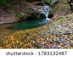 A Mountain Stream With Lots Of...