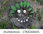 A Smile Made Of Mushrooms On A...