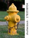 Yellow Fire Hydrant With...
