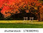 Two Free Chairs And Red Leaves...