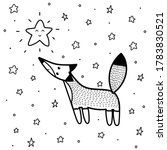 Cute Fox Looking At The Star...