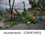 Howrah  West Bengal  India  ...
