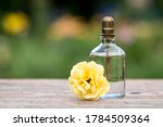 Blank Cosmetics Bottles With...