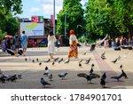 Tourists Walking Feeding Birds...
