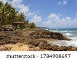 Small photo of North coast of Puerto Rico. Puerto Hermina.