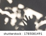 Hand Holding Under Sunset Ligh...