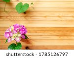 Pink Hydrangea On Background Of ...