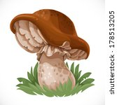 Large Edible Mushroom In The...