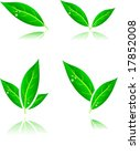 beautiful leaf icons. vector... | Shutterstock .eps vector #17852008