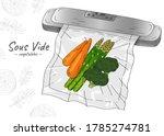 vector hand drawn sketch... | Shutterstock .eps vector #1785274781
