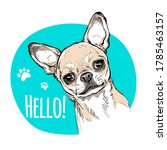 Hello Illustration With Cute...