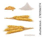 3d vector realistic wheat set ...   Shutterstock .eps vector #1785586574