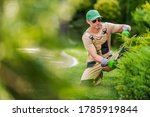 Caucasian Garden Worker in His 40s Trimming Decorative Garden Plants Using Professional Cutting Tools. Landscaping and Gardening Industry Theme. - stock photo